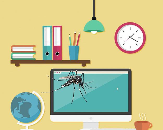 Funcionário novo?  Saiba como exterminar focos do Aedes no ambiente de  trabalho
